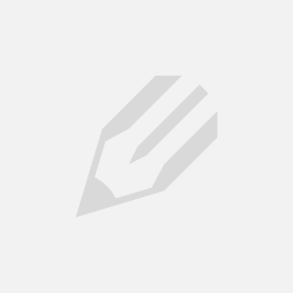 Fist Fight 2017 dual audio 1080p online full movie